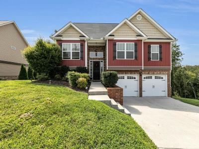 Ooltewah Single Family Home For Sale: 7324 Landlock Dr