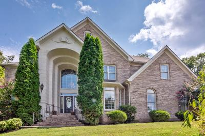 Hixson Single Family Home For Sale: 2038 Marina Cove Dr
