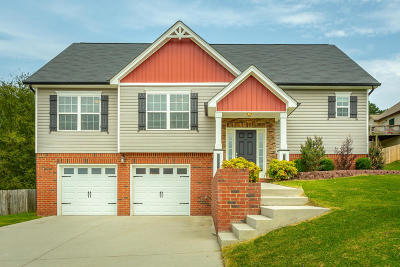 Hixson Single Family Home For Sale: 8574 Booth Bay Dr