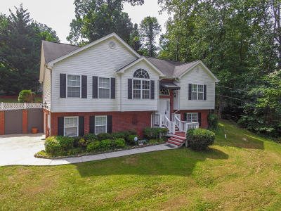 Ringgold Single Family Home For Sale: 554 Akins Rd