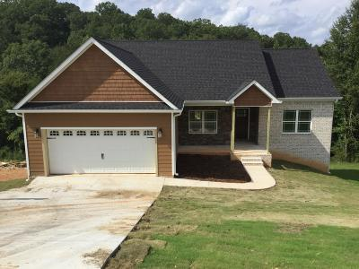 Ooltewah Single Family Home For Sale: 5620 Caney Ridge Cir