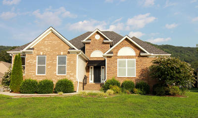 Ooltewah Single Family Home For Sale: 8792 Sunridge Dr