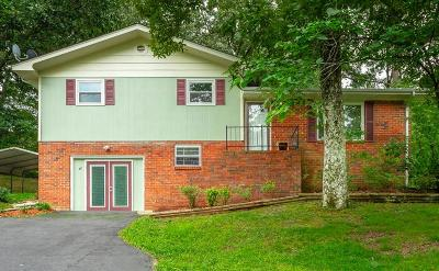 Dunlap Single Family Home For Sale: 68 Stagg St