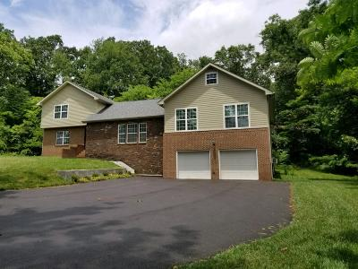Hixson Single Family Home For Sale: 537 Gadd Rd