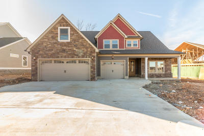 Ringgold Single Family Home For Sale: 230 Tuscany Village Drive