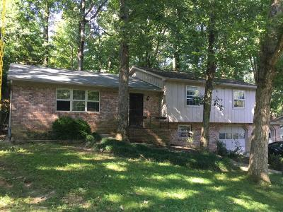 Signal Mountain Single Family Home For Sale: 819 Skyline Park Dr