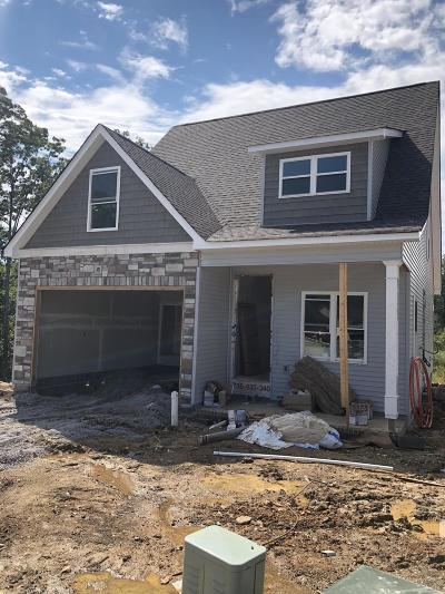 Ringgold Single Family Home Contingent: 280 Georgetown Dr #50