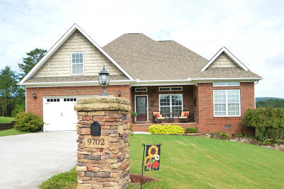 Soddy Daisy Single Family Home For Sale: 9702 Starry Way