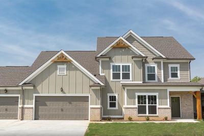 Ooltewah Single Family Home For Sale: 8365 River Birch Loop #12