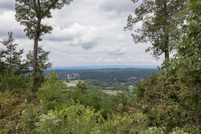 Residential Lots & Land Contingent: 2265 Heavenly View Dr