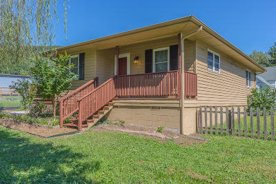 Soddy Daisy Single Family Home Contingent: 443 Ducktown St