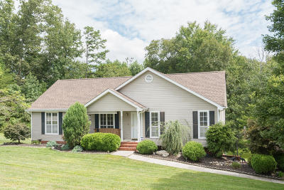 Soddy Daisy Single Family Home For Sale: 387 Ashley Dr