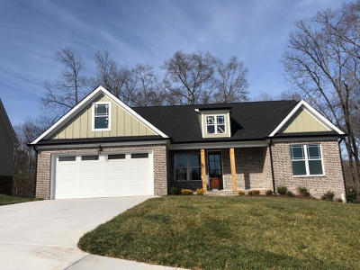 Ooltewah Single Family Home For Sale: 5834 Caney Ridge Cir