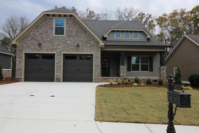 Ooltewah Single Family Home For Sale: 9070 Silver Maple Dr