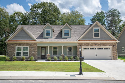 Ringgold Single Family Home For Sale: 625 Live Oak Rd