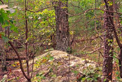 Rising Fawn Residential Lots & Land For Sale: 00 Sunset Dr #24