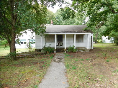Rising Fawn Single Family Home For Sale: 4131 Scenic Hwy