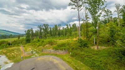 Trenton Residential Lots & Land For Sale: Back Valley Rd
