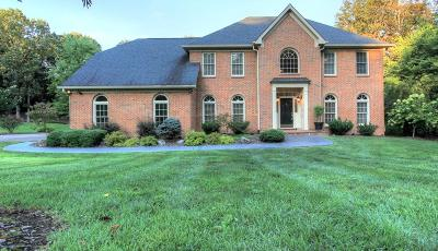 Chattanooga Single Family Home For Sale: 9413 Woody Hollow Dr
