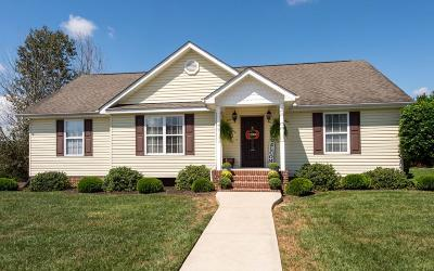 Soddy Daisy Single Family Home Contingent: 10512 Sovereign Pointe Dr