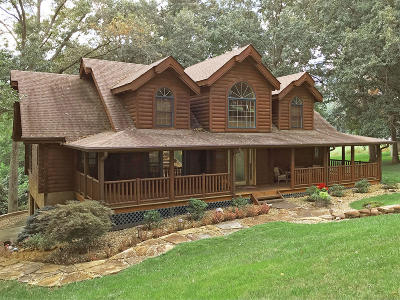 Single Family Home For Sale: 119 Bicentennial Dr