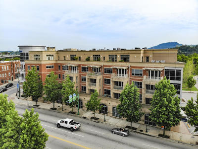 Chattanooga Condo For Sale: 4 Cherokee Blvd #Apt 205