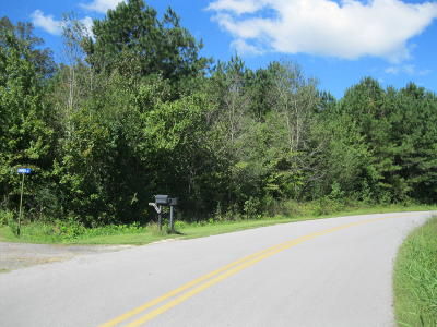 Residential Lots & Land For Sale: Stewart