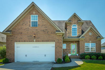 Ooltewah Single Family Home For Sale: 8422 Gracie Mac Ln