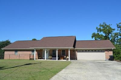 Spring City Single Family Home For Sale: 229 Scenic Hill Dr