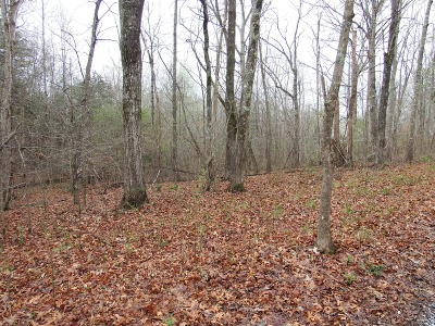 Rising Fawn Residential Lots & Land For Sale: 17 Pebble Dr