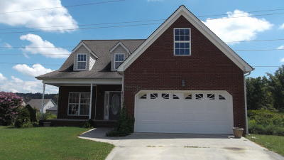 Chattanooga TN Single Family Home For Sale: $223,000