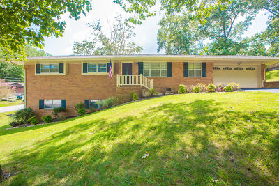 Hixson Single Family Home For Sale: 1300 Terry Ln