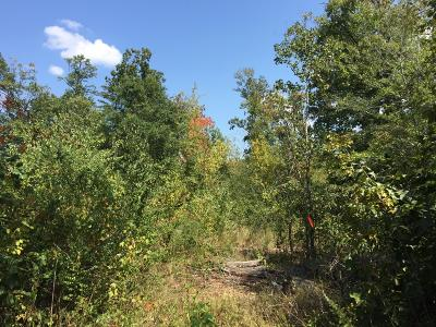 Trenton Residential Lots & Land For Sale: Bible Camp Rd