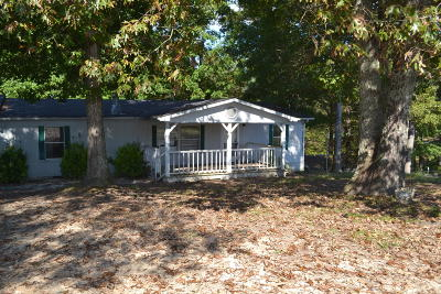 Spring City Single Family Home For Sale: 180 Cactus Ln