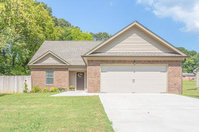 Chattanooga Single Family Home For Sale: 4521 Dumac Rd