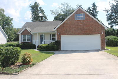 Ringgold Single Family Home For Sale: 134 Water Mill Trce