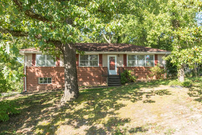 Chattanooga Single Family Home For Sale: 3704 Mary Anna Dr