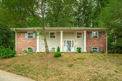 Chattanooga Single Family Home For Sale: 3653 Woodmont Drive
