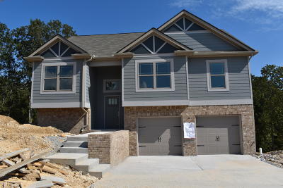 Soddy Daisy Single Family Home For Sale: 1035 Longo Dr #Lot No.