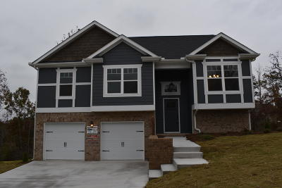 Soddy Daisy Single Family Home For Sale: 1090 Longo Dr #Lot No.