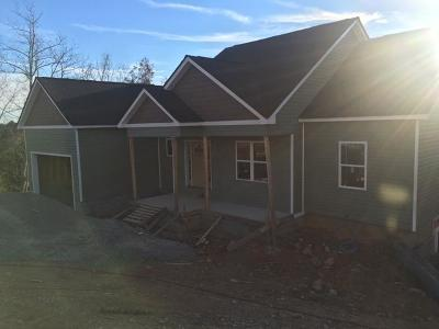 Soddy Daisy Single Family Home For Sale: 1031 Trojan Run Dr