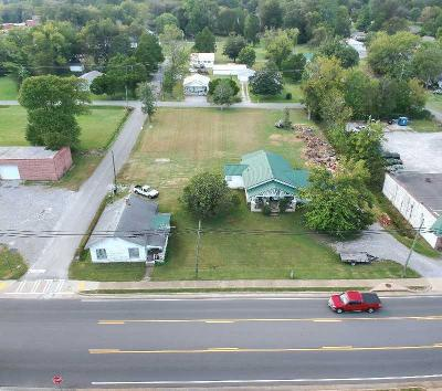 Trenton Single Family Home For Sale: 12531 N Main St #1