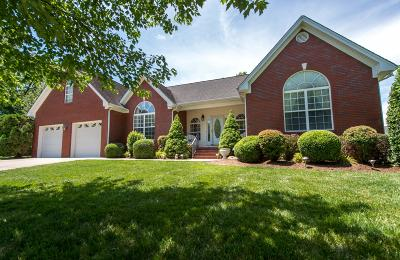 Ooltewah Single Family Home For Sale: 7133 Goldenrod Ct