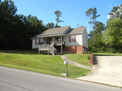 Ringgold Single Family Home Contingent: 56 Patty Rd