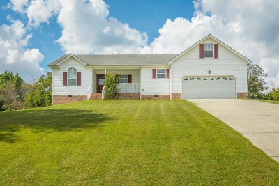 Ringgold Single Family Home For Sale: 94 Spring Wind Cir