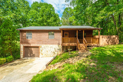 Ringgold Single Family Home For Sale: 161 Peters Ln