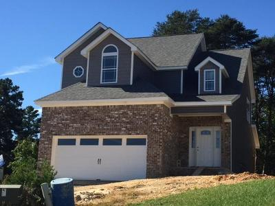 Hixson Single Family Home For Sale: 6401 Faultless Way