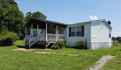 Riceville Single Family Home For Sale: 2278 Highway 163