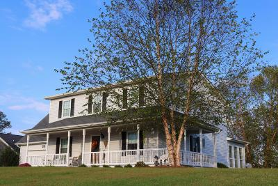 Ringgold Single Family Home For Sale: 182 Haven Dr