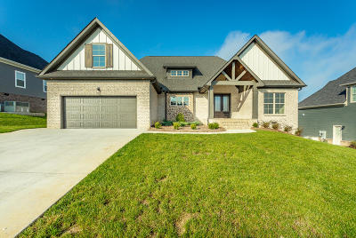 Soddy Daisy Single Family Home For Sale: 10947 High River Dr #Lot 81